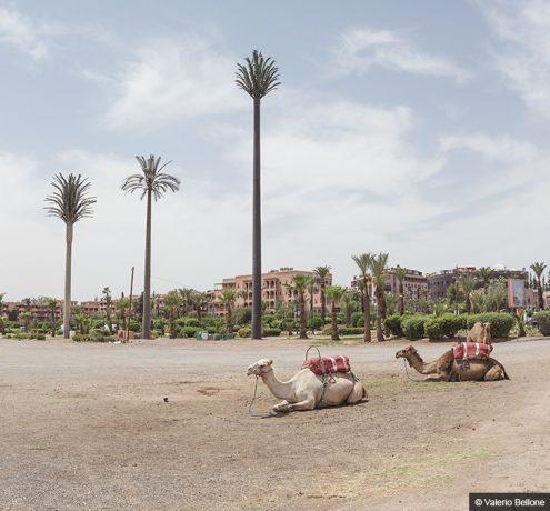 13_I-colori-del-Marocco_Copyright_Valerio-Bellone